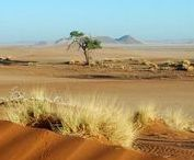 Namibia / Travel the Land of Contrasts with BMS-Travellers