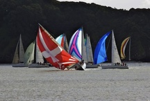 Sailing in Tiburon