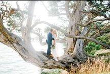 W E D D I N G ♡ D E T A I L S / Wedding Inspiration
