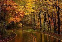 Date me, ♥ Autumn.