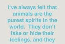 Quotes / by Cora Williams