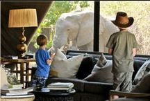 African Family Safaris