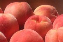 Peach / Coral