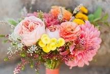 Bouquets Mariée Multicolors Bouquets // Bright Wedding Bouquet / Une sélection des plus beaux bouquets de mariage multicolors. // A selection of the most beautiful bright multicolored wedding bouquets.