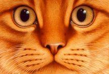 Cat Art / Feline works of art