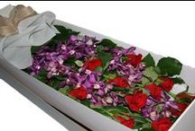Flower Arrangements / Flower arrangements for every occasion