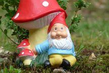 Nains de jardin et champipi / nains de jardin et champignons sous toutes les formes