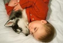 Animal loving / by Delozash