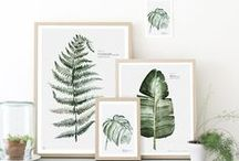 Living: Urban botanics / Green, concrete, white and plant prints. Change your living room into a cozy green room.
