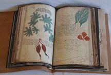 Voynisch Manuscript,Key to the Prague portal another dimension?