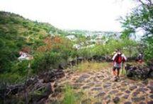 Balades et Rando dans l'Ouest de La Réunion / Mafate est le royaume de la randonnée : sur une journée ou plusieurs jours, vous pourrez découvrir ce magnifique cirque classé au Patrimoine mondial de l'Unesco. De nombreux itinéraires sont également accessibles sur tout le reste du territoire dans des paysages complètements différents : savane - forêt de bois de couleur ... Alors prenez vos chaussures de marche et découvrez notre beau patrimoine naturel.