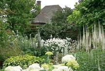 Jardins et Fleurs  / by Ali Bradley