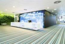 Gezond & Groen visie / Gezond & Groen ideeën : voor Gezonde gebouwen - Visie - Kernwaarden