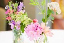 Flowers/Plants Decorations