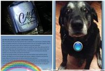 Meet Me Over The Rainbow Bridge / In memory of our beloved Zipper who walked over that rainbow bridge on March 11, 2015. All proceeds from the sale of this polish is donated to the American Society for the Prevention of Cruelty to Animals (ASPCA).