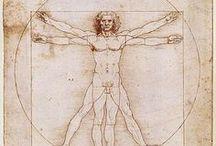 "L'Uomo Vitruviano / variations of Leonardo da Vinci's ""Vitruvian Man,"" c. 1490"