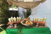 Fun VTNC Birthday Party Ideas / Create a complete Traveling Nature Class birthday party with these fun and easy ideas.