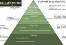 Emergency Preparedness & Survival