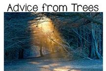 Advice From Trees