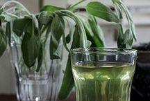 Tea&Herbs