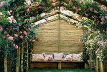 jardin - outdoor / Outdoor