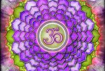 http://fractalenlightenment.com / http://fractalenlightenment.com/17313/spirituality/kundalini-rising-part-1-the-root-chakra
