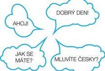 Teaching / teaching foreign languages