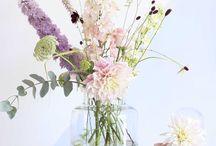Verse bloemen
