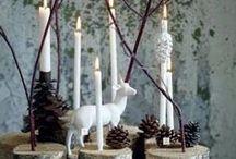 Christmas! / let the tree battle begin!
