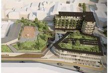 Verde pensile / Il verde pensile permette di ridurre i consumi energetici e ridurre l'inquinamento di ogni abitazione singola e condominio e promuovere la crescita sostenibile in ogni nostra città.
