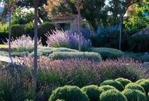 Home & Garden / gardening home design