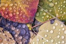 Colors that make me happy ! / colors that creates pleasure