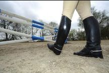 Horsemanship / Are you constantly trying to improve your horsemanship?