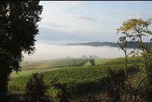 ITALY - MONFERRATO LANDSCAPES