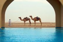 Travel Inspiration Abu Dabi