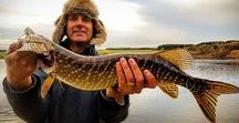 Perch & Pike fishing in Scotland / Some pictures of our Guests with many firsts. Many fishing Guests fulfilling their dream fishing holiday in Scotland.