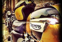 Triumph a donf' ✔ / Les plus belles motos Triumph... / by LDZintegratore