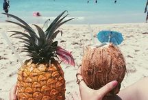 { Tropical adventure } / by Katie Dolan