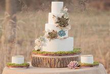 Cake Beauty / by Sarah Hilton