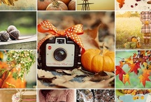 Autumn/Favorite Season / by Nikki Zapien