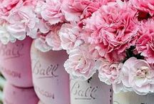 ✽ Pretty in PINK♔ ✽