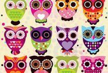 ✽ Owl Love ✽