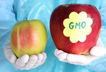 GMO Awareness / Here you will find news and information about genetically modified organisms within the food industry. Awareness is needed to inform the public about what is in their food and where our food comes from.   http://ecowatch.com/category/news/agriculture-news/food-agriculture/gmo-genetically-modified-organism/ / by EcoWatch