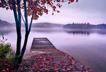 Пейзажи / Прикаснитсь к прекрасному. Можно увидеть различные сюжеты:  пейзажи, натюрморты, цветы.