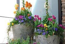 Для САДА /  В саду отдыхают все пять чувств сразу.