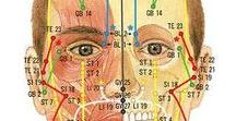 medicina china / tcm / acupuntura, digitoprecion, masajes, alimentación y diagnosticos