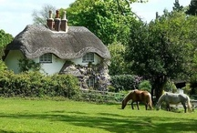 The English Countryside / by jane peak