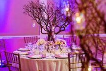 my wedding day *
