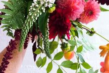 Vanessa Birley Florals / Vanessa Birley Florals: dynamic, luxurious & seasonal flowers, SW London
