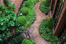 Gardening / by Karen Malan